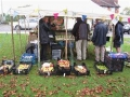 Apple Day on the Green
