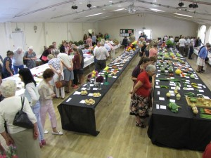 Over 550 entires in the Flower Show
