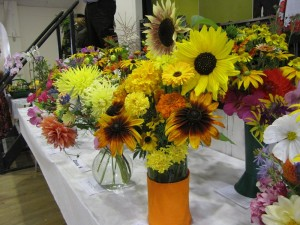 Colourful Flower Show