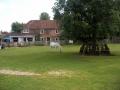 village-green-horse-af